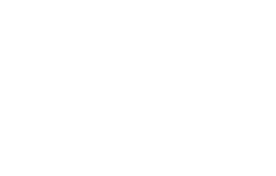 Minnesota Women Lawyers - 2020 Partner - Silver